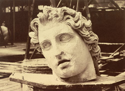 Head From One Of The Colossi Of Monte Cavallo, Rome, By Phidias